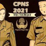 Lowongan PPK dan CPNS 2021, Kapan Pastinya Pendaftaran Dibuka?